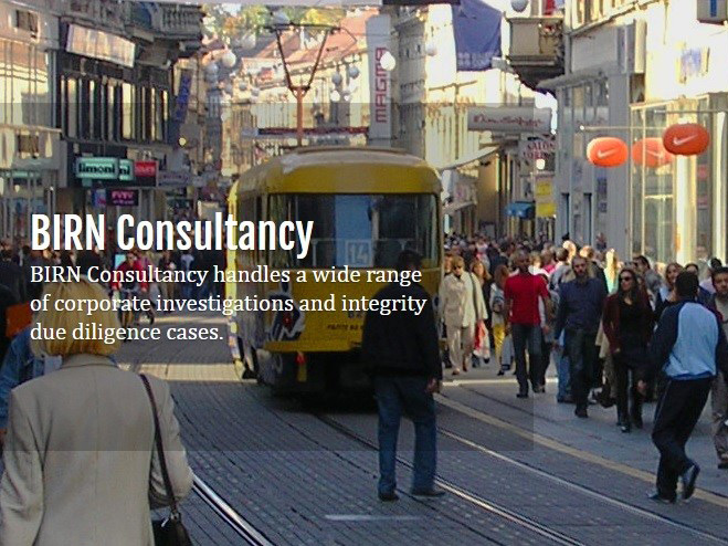 BIRN Consultancy: Cooperation with Friedrich Ebert Stiftung