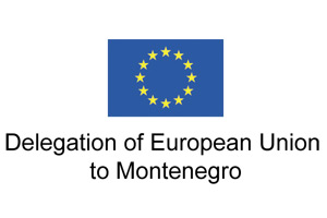 Delegation of the European Union to Montenegro