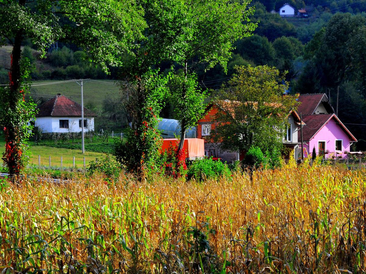 Bosnian Procurement Agency Launches Case After BIRN Article