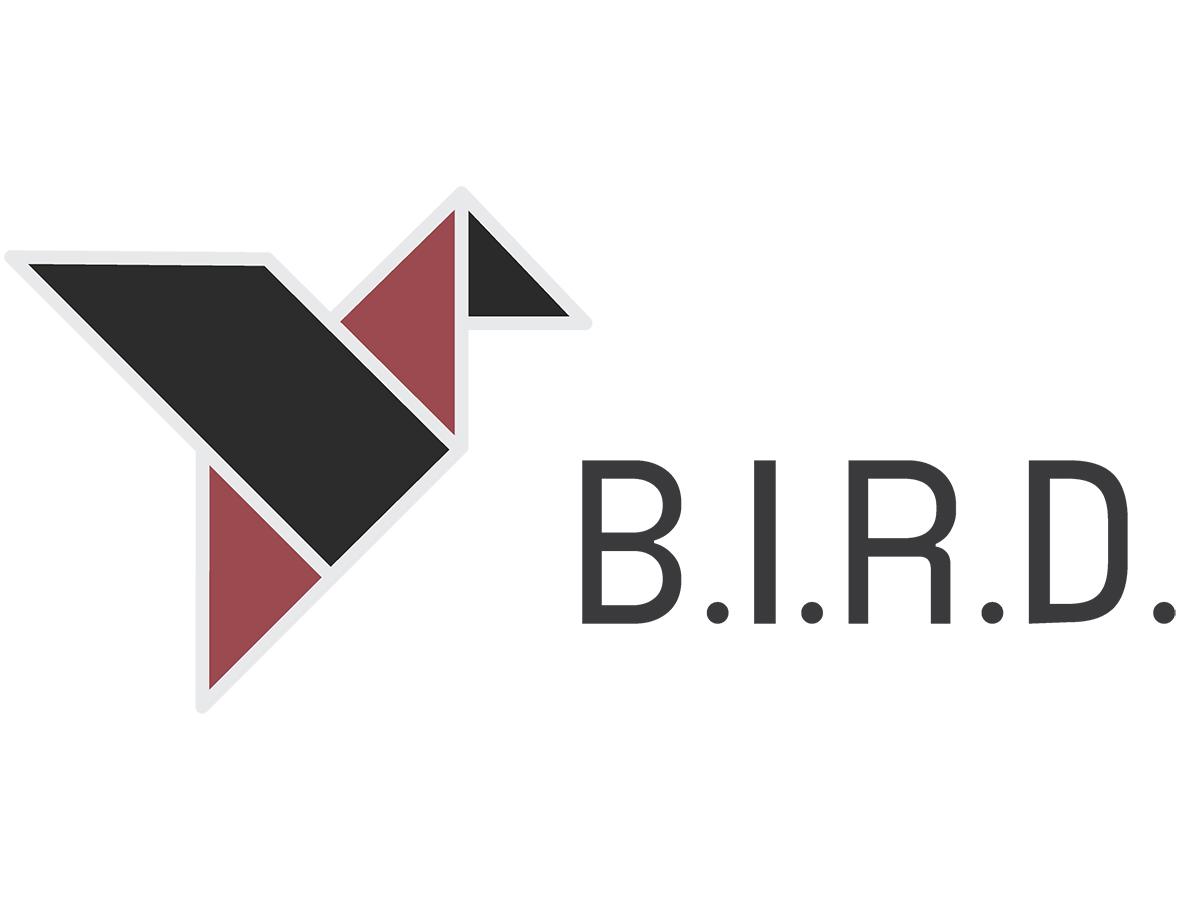 BIRN Investigative Resource Desk